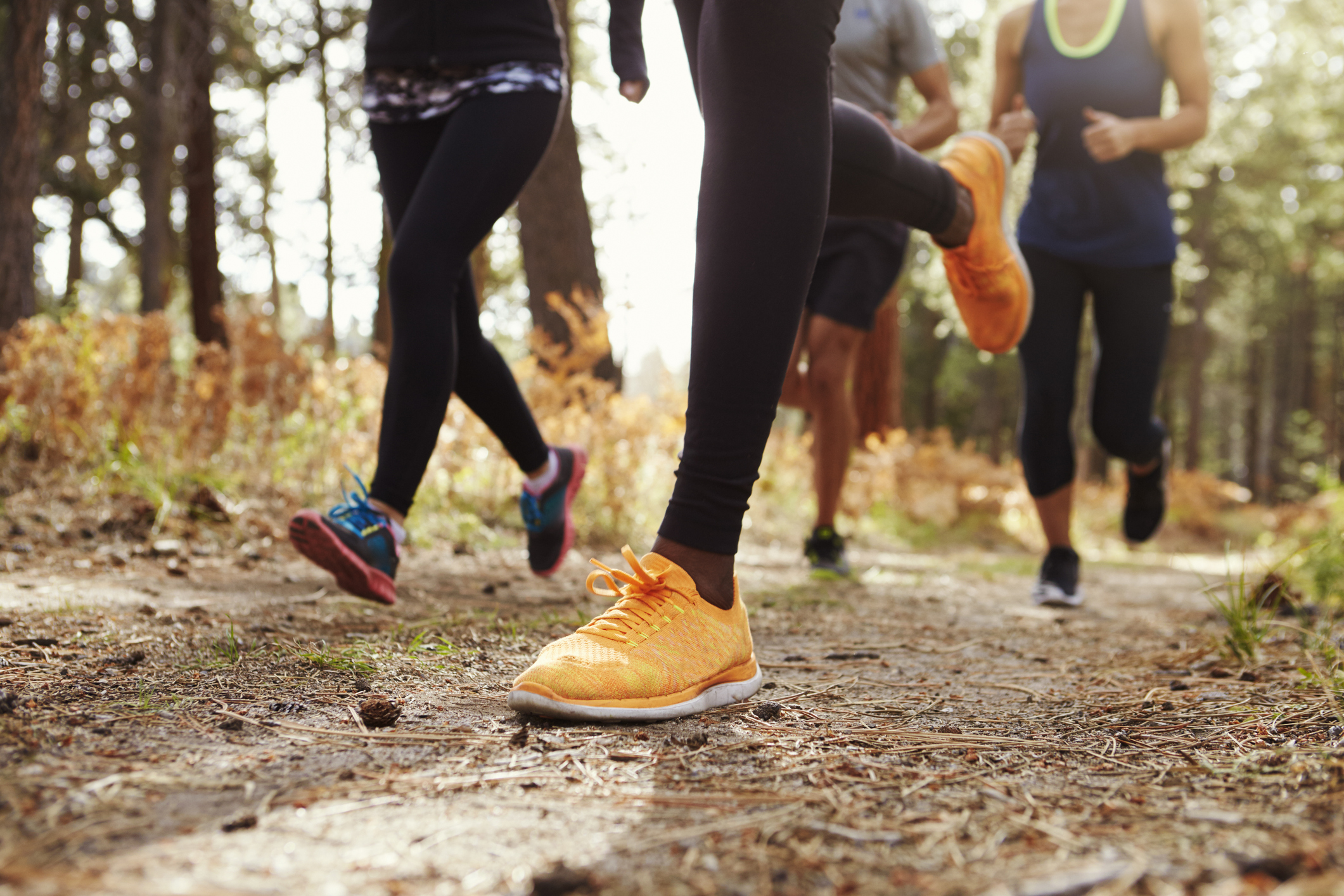 Legs and shoes of four young adults running in forest